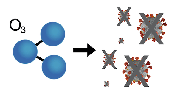 Ozono inactiva al Coronavirus